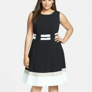 Nwot Calvin Klein color block fit & flare dress 16